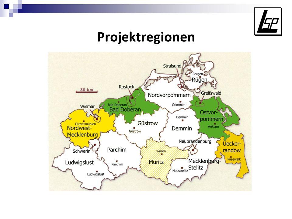 Projektphasen Phase 1: Analyse und Beschreibung der vorhandenen sowie benötigten Unterstützungssysteme Phase 2: Vorschläge zur Optimierung und Stärkung des Unterstützungssystems Phase 3: Regionale Umsetzung und Evaluation einiger modellhafter Bausteine