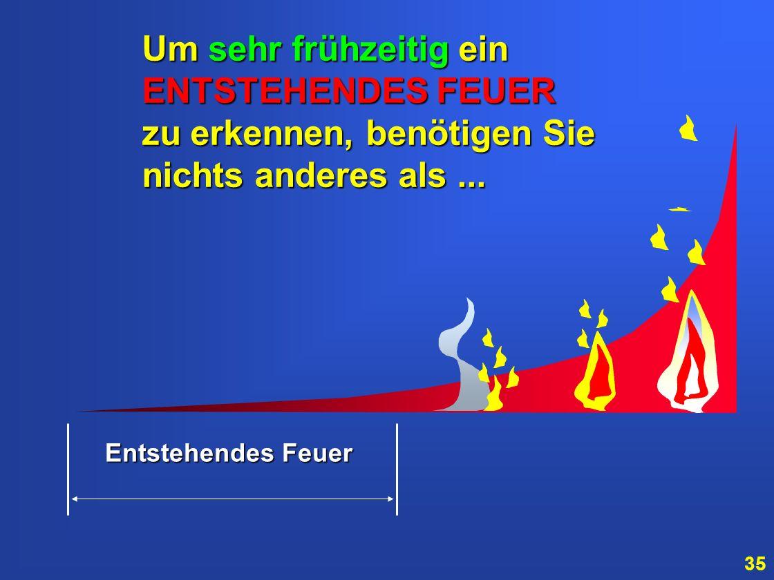 34 Entstehendes Feuer...wenn Sie in der Lage sind, einen Brand bereits im ENTSTEHUNGSSTADIUM entdecken zu können, verbleiben Ihnen oft mehrere Stunden