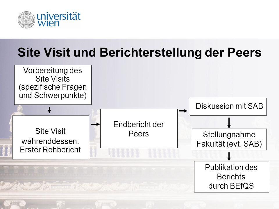 Site Visit und Berichterstellung der Peers Site Visit währenddessen: Erster Rohbericht Endbericht der Peers Diskussion mit SAB Publikation des Bericht