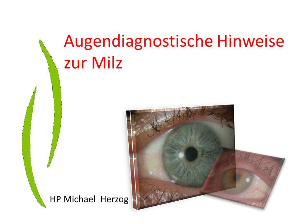 Augendiagnostische Hinweise zur Milz HP Michael Herzog