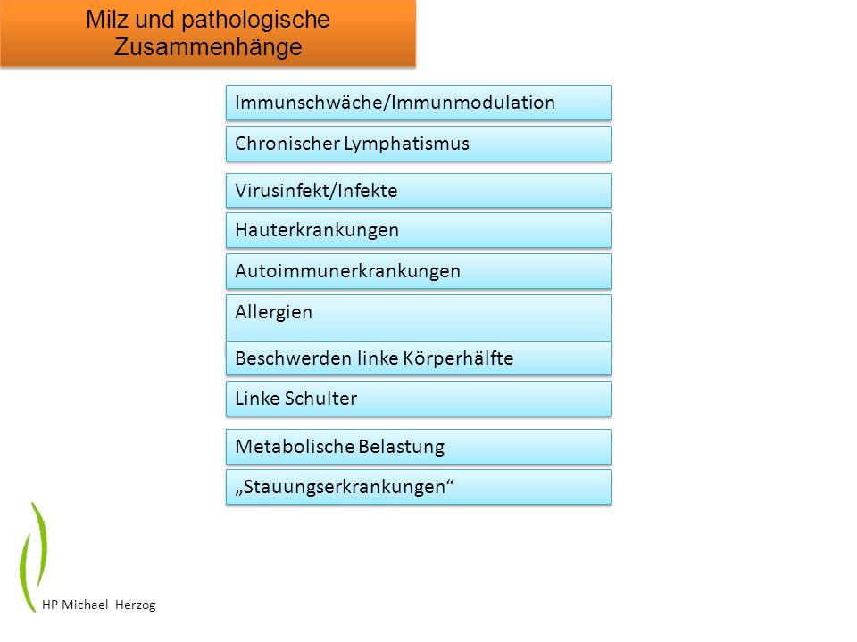 HP Michael Herzog Milz und pathologische Zusammenhänge Immunschwäche/Immunmodulation Chronischer Lymphatismus Virusinfekt/Infekte Hauterkrankungen Aut