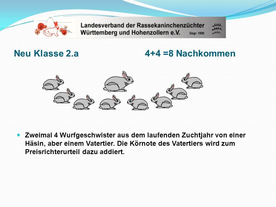 Neu Klasse 2.a 4+4 =8 Nachkommen Zweimal 4 Wurfgeschwister aus dem laufenden Zuchtjahr von einer Häsin, aber einem Vatertier. Die Körnote des Vatertie