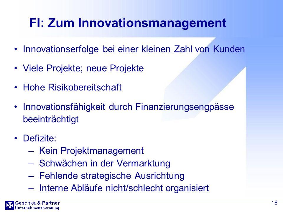16 FI: Zum Innovationsmanagement Innovationserfolge bei einer kleinen Zahl von Kunden Viele Projekte; neue Projekte Hohe Risikobereitschaft Innovation
