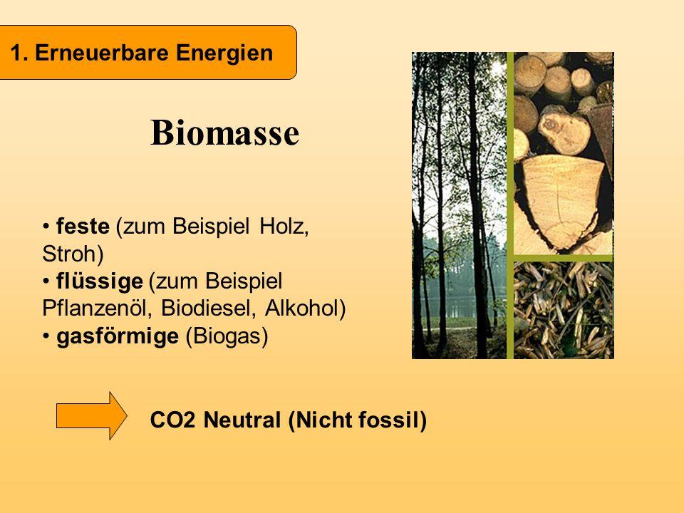 1. Erneuerbare Energien Biomasse feste (zum Beispiel Holz, Stroh) flüssige (zum Beispiel Pflanzenöl, Biodiesel, Alkohol) gasförmige (Biogas) CO2 Neutr