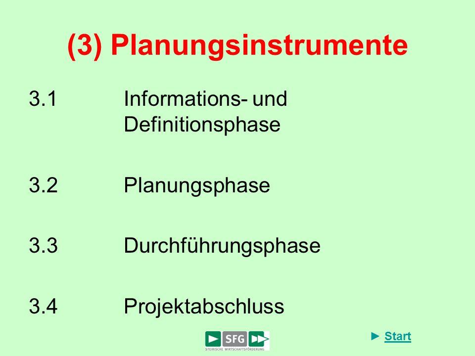Start (3) Planungsinstrumente 3.1Informations- und Definitionsphase 3.2Planungsphase 3.3Durchführungsphase 3.4Projektabschluss