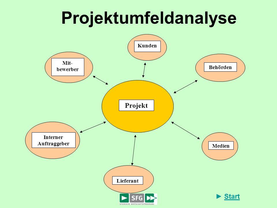 Start Projektumfeldanalyse Projekt Behörden Kunden Mit- bewerber Interner Auftraggeber Lieferant Medien