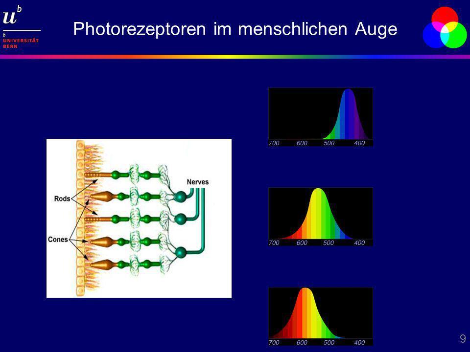 9 Photorezeptoren im menschlichen Auge
