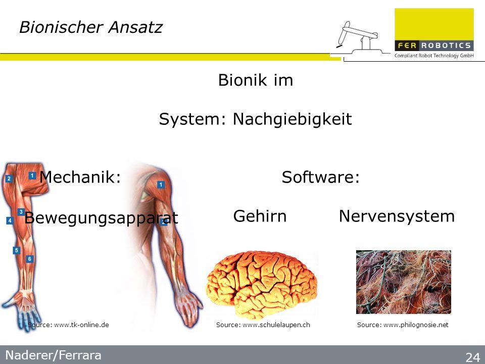 Naderer/Ferrara 24 Bionischer Ansatz Bionik im System: Nachgiebigkeit Mechanik:Software: Gehirn Nervensystem Source: www.schulelaupen.chSource: www.tk-online.deSource: www.philognosie.net Bewegungsapparat