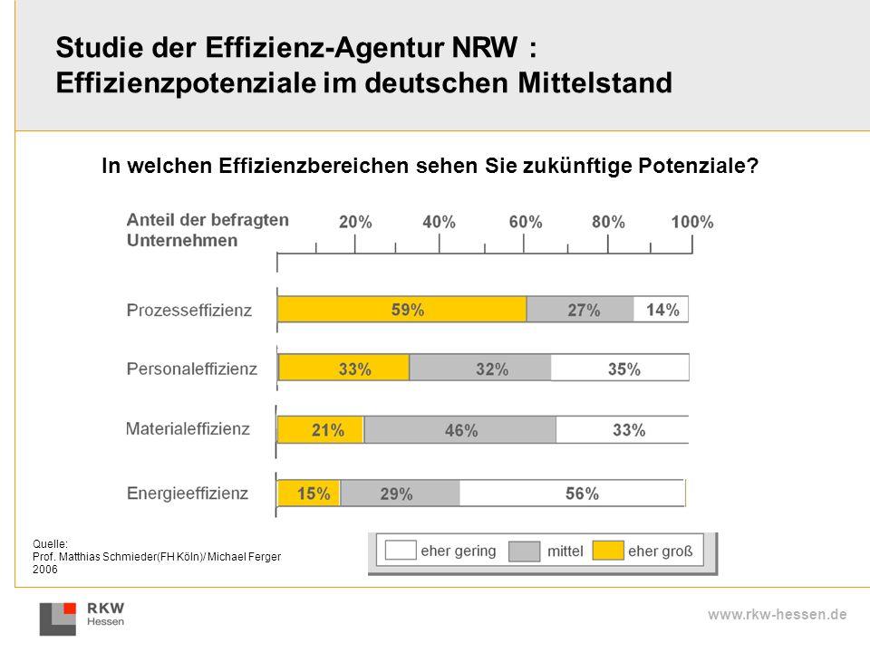 www.rkw-hessen.de Studie der Effizienz-Agentur NRW : Effizienzpotenziale im deutschen Mittelstand In welchen Effizienzbereichen sehen Sie zukünftige P