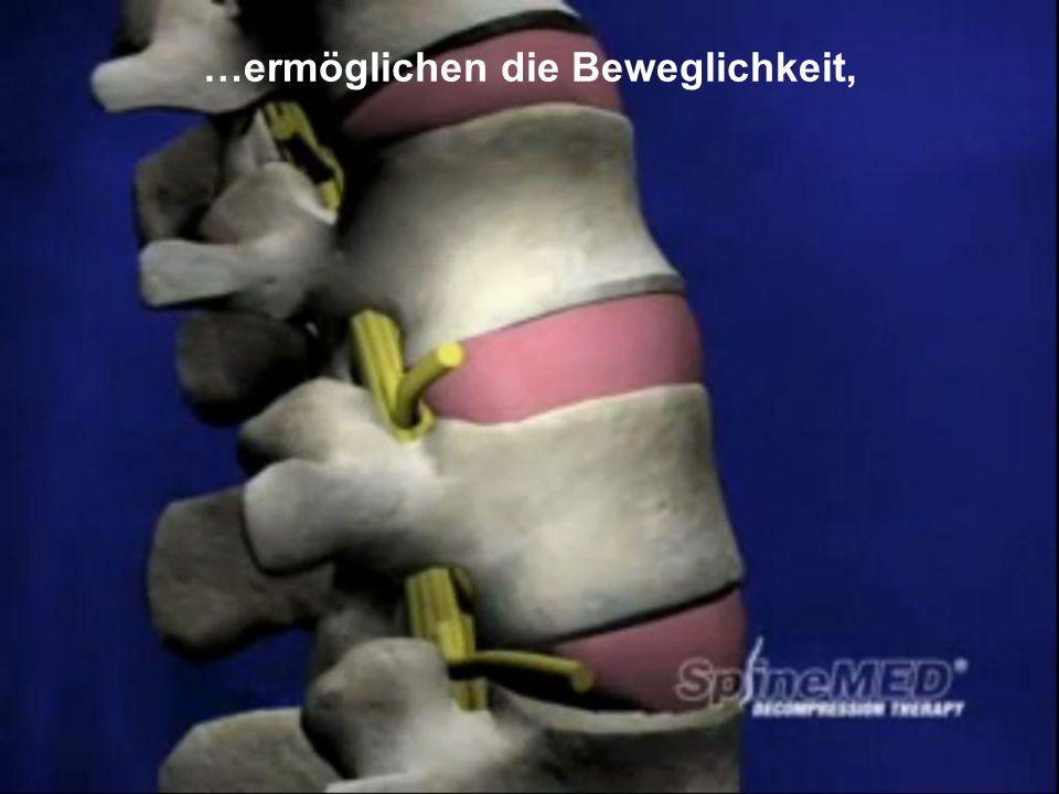 Copyright © SpineMED GmbH All Rights Reserved …ermöglichen die Beweglichkeit,