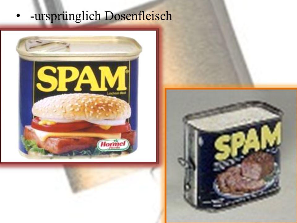 3.Phishing: -Versuch an Daten von Internet-Benutzern durch gefälschte Websites/E-Mails zu kommen -Password harvesting(ernten) fishing -ignorieren oder überprüfen