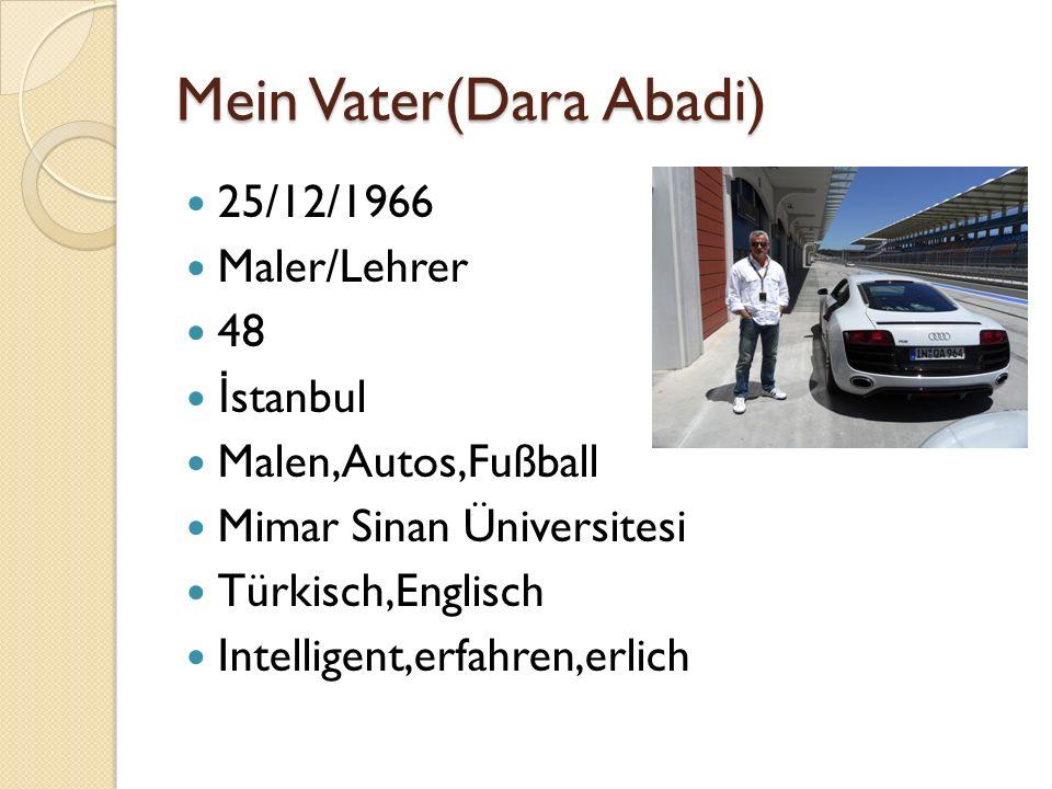 Mein Vater(Dara Abadi) 25/12/1966 Maler/Lehrer 48 İ stanbul Malen,Autos,Fußball Mimar Sinan Üniversitesi Türkisch,Englisch Intelligent,erfahren,erlich