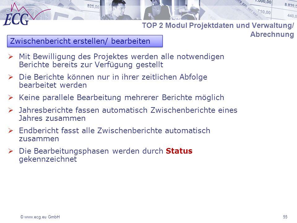 © www.ecg.eu GmbH Mit Bewilligung des Projektes werden alle notwendigen Berichte bereits zur Verfügung gestellt Die Berichte können nur in ihrer zeitl