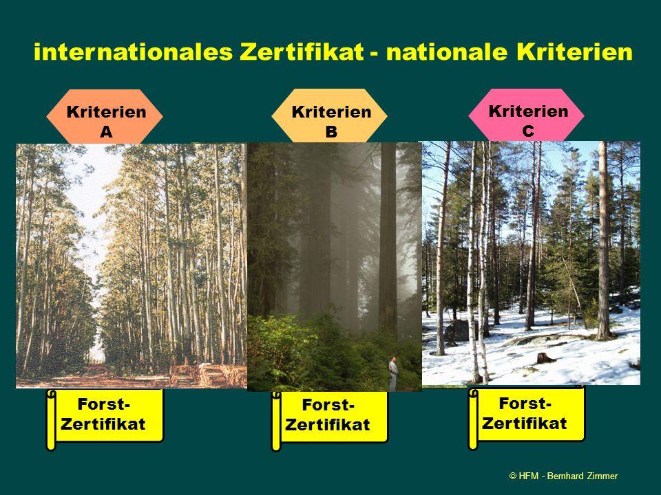 HFM - Bernhard Zimmer Globales Logo - Regionale Kriterien Forst- wirtschaft A Kriterien A Forst- Zertifikat Forst- wirtschaft B Kriterien B Forst- Zer