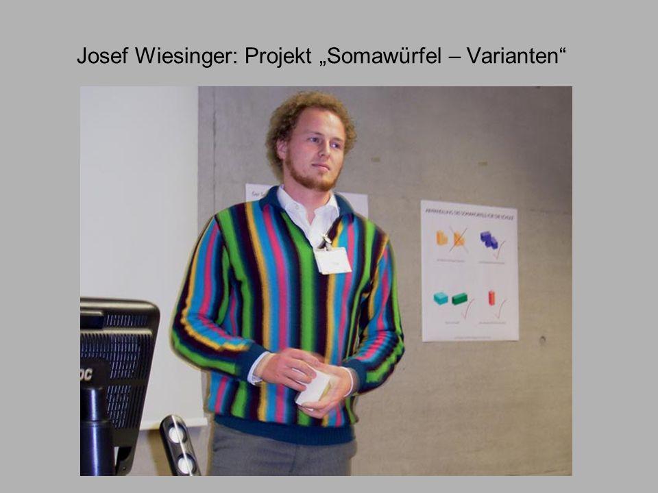 Josef Wiesinger: Projekt Somawürfel – Varianten