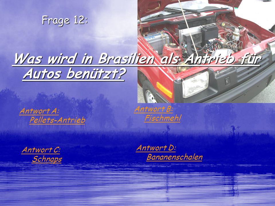 Frage 12: Was wird in Brasilien als Antrieb für Autos benützt? Antwort A: Pellets-Antrieb Antwort B: Fischmehl Antwort C: Schnaps Antwort D: Bananensc