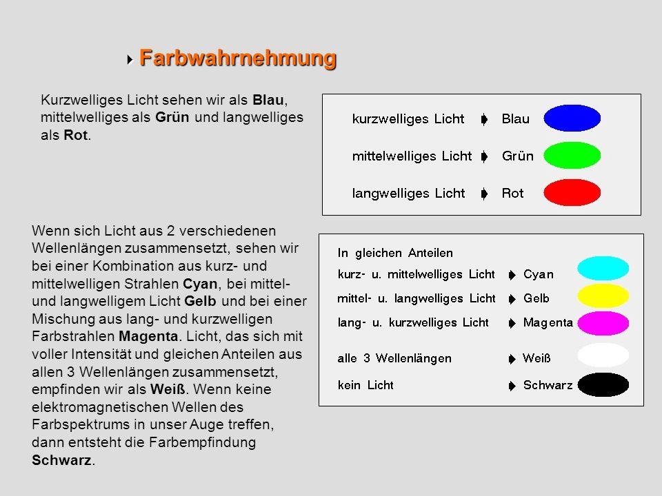 Farbwahrnehmung Farbwahrnehmung Kurzwelliges Licht sehen wir als Blau, mittelwelliges als Grün und langwelliges als Rot. Wenn sich Licht aus 2 verschi