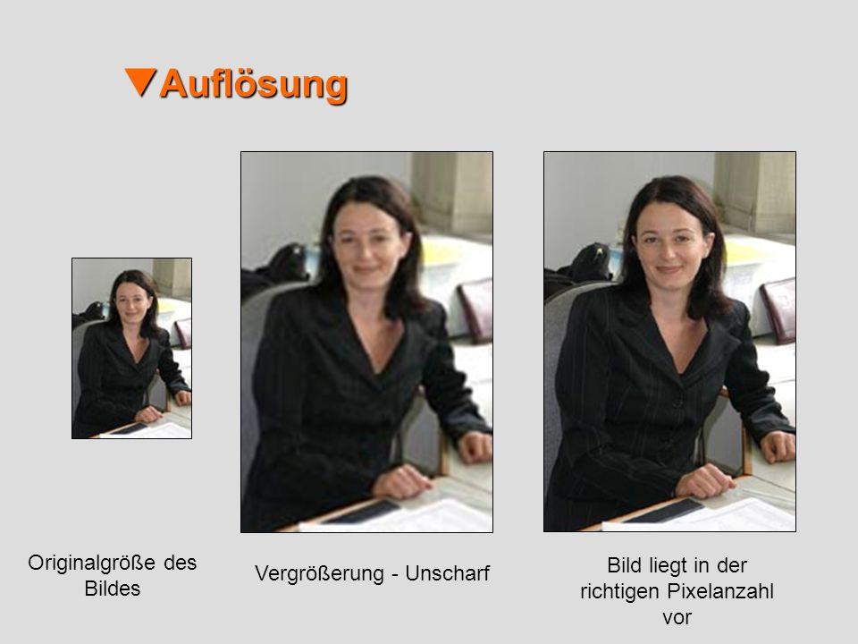 Auflösung Auflösung Originalgröße des Bildes Vergrößerung - Unscharf Bild liegt in der richtigen Pixelanzahl vor