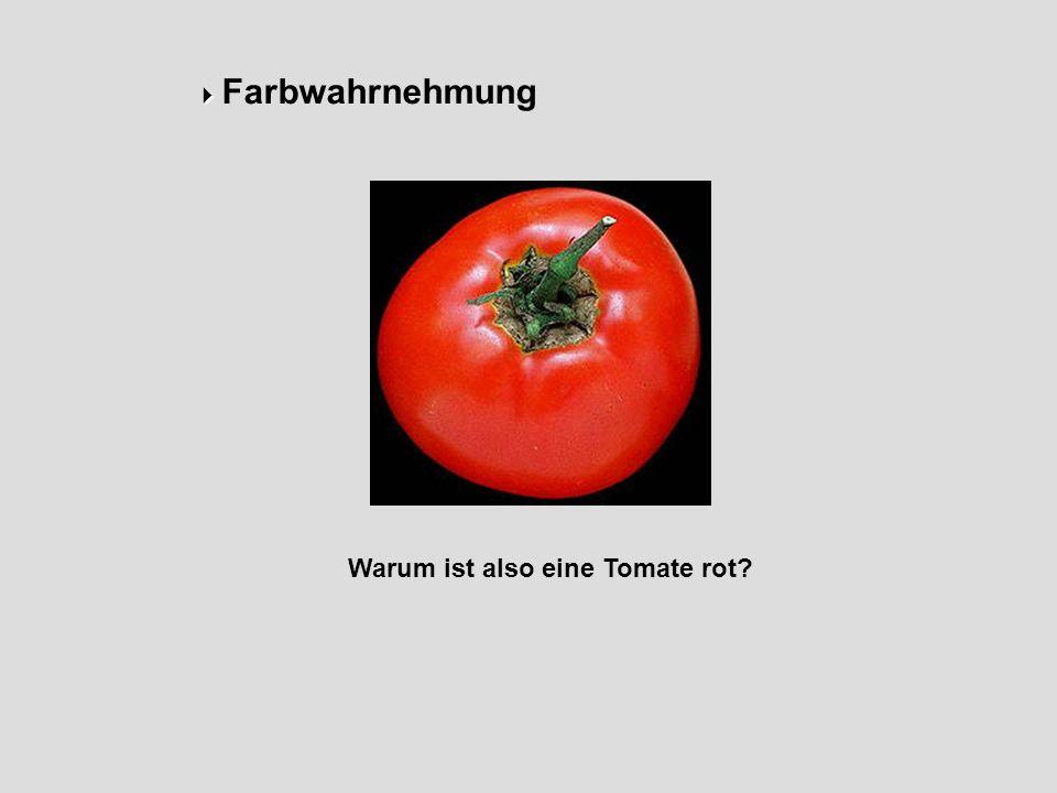 Farbwahrnehmung Warum ist also eine Tomate rot?