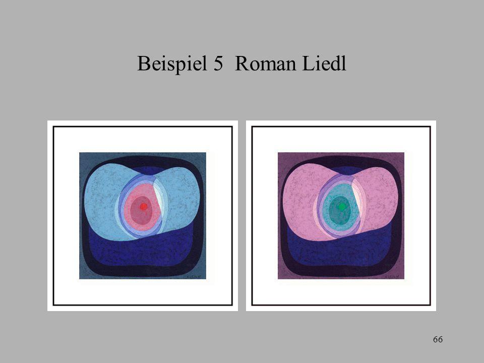 66 Beispiel 5 Roman Liedl