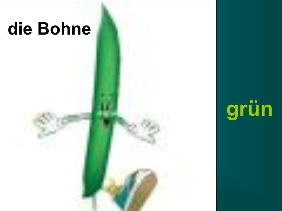 die Bohne grün