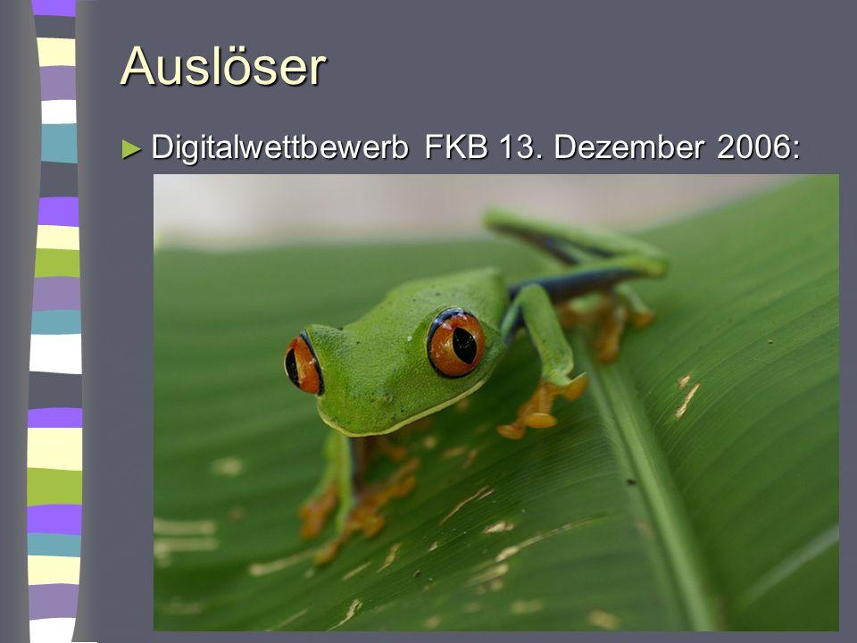 Auslöser Digitalwettbewerb FKB 13. Dezember 2006: Digitalwettbewerb FKB 13. Dezember 2006: