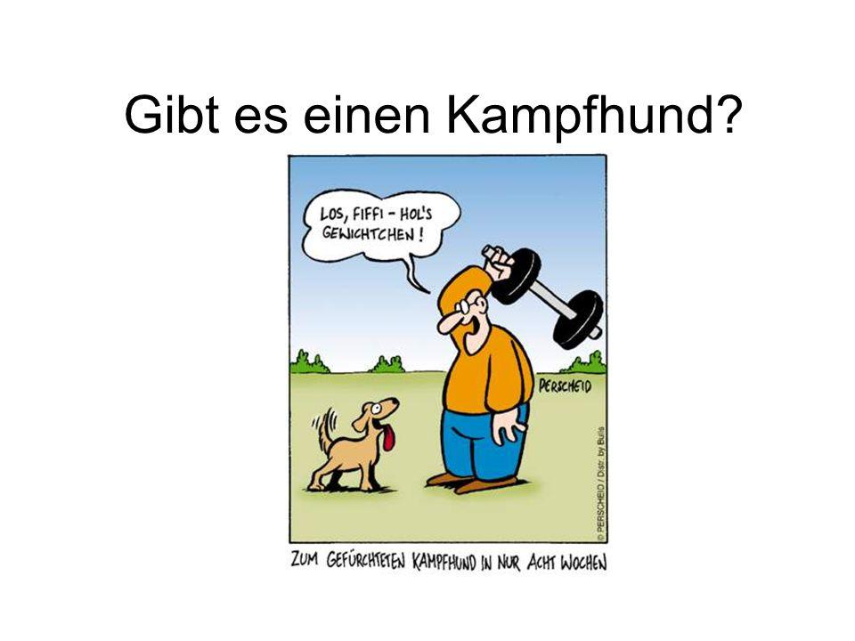 Hunde der Liste 2 in Bayern MastiffMastin EspanolMastino Napoletano Perro de Presa Canario* Perro de Presa Mallorquin* Rottweiler*