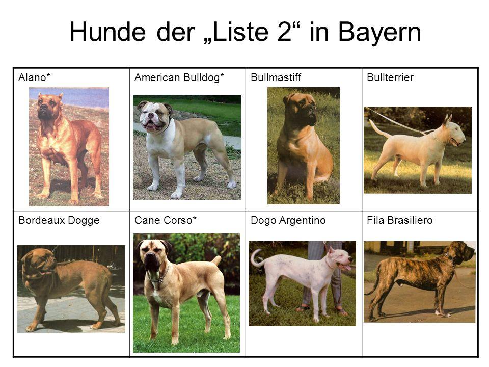 Hunde der Liste 2 in Bayern Alano*American Bulldog*BullmastiffBullterrier Bordeaux DoggeCane Corso*Dogo ArgentinoFila Brasiliero