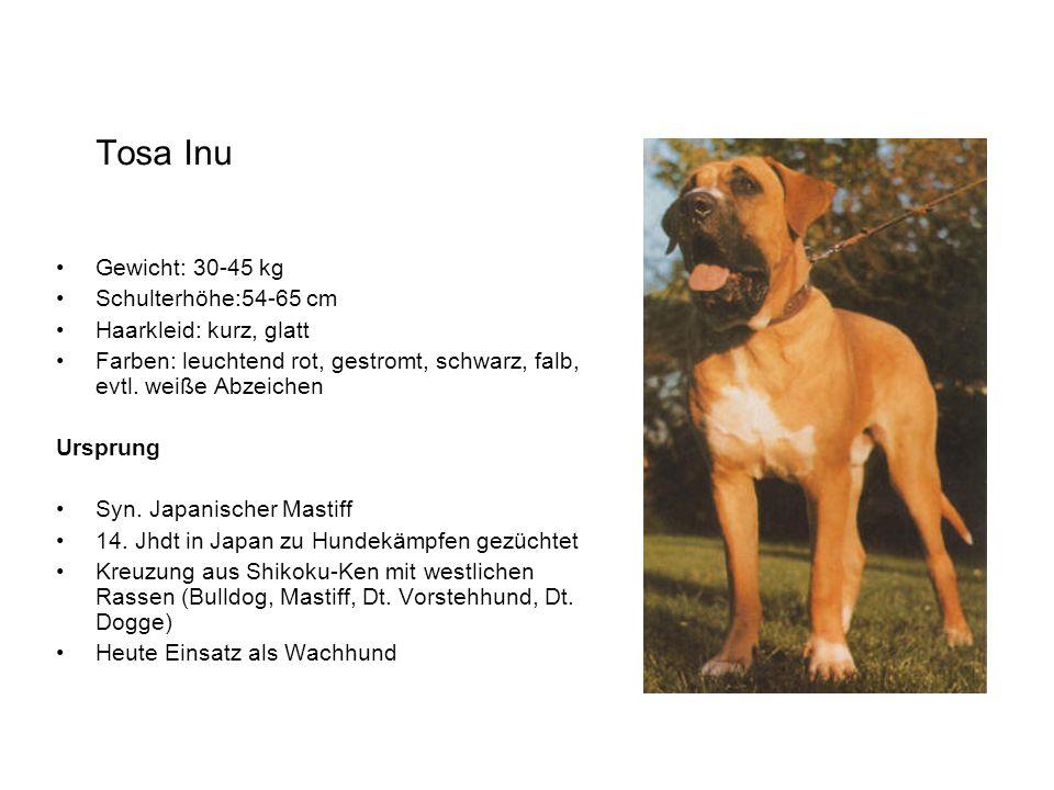 Tosa Inu Gewicht: 30-45 kg Schulterhöhe:54-65 cm Haarkleid: kurz, glatt Farben: leuchtend rot, gestromt, schwarz, falb, evtl. weiße Abzeichen Ursprung