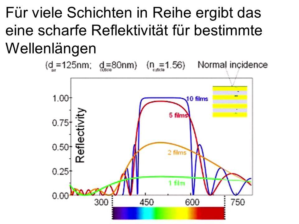 Für viele Schichten in Reihe ergibt das eine scharfe Reflektivität für bestimmte Wellenlängen