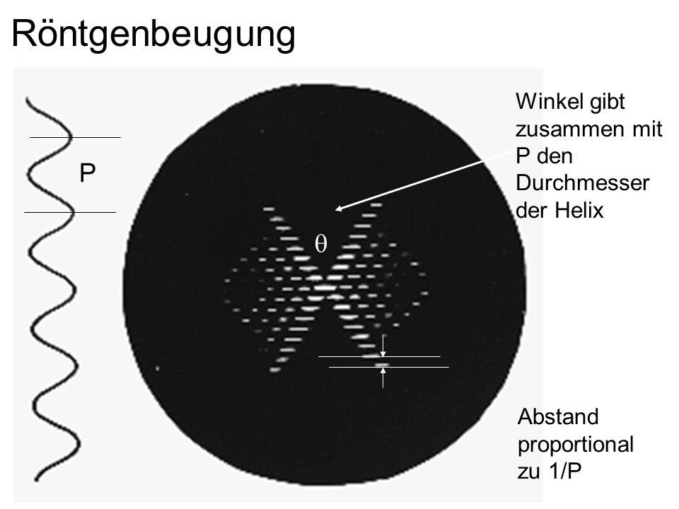 Winkel gibt zusammen mit P den Durchmesser der Helix Abstand proportional zu 1/P Röntgenbeugung P
