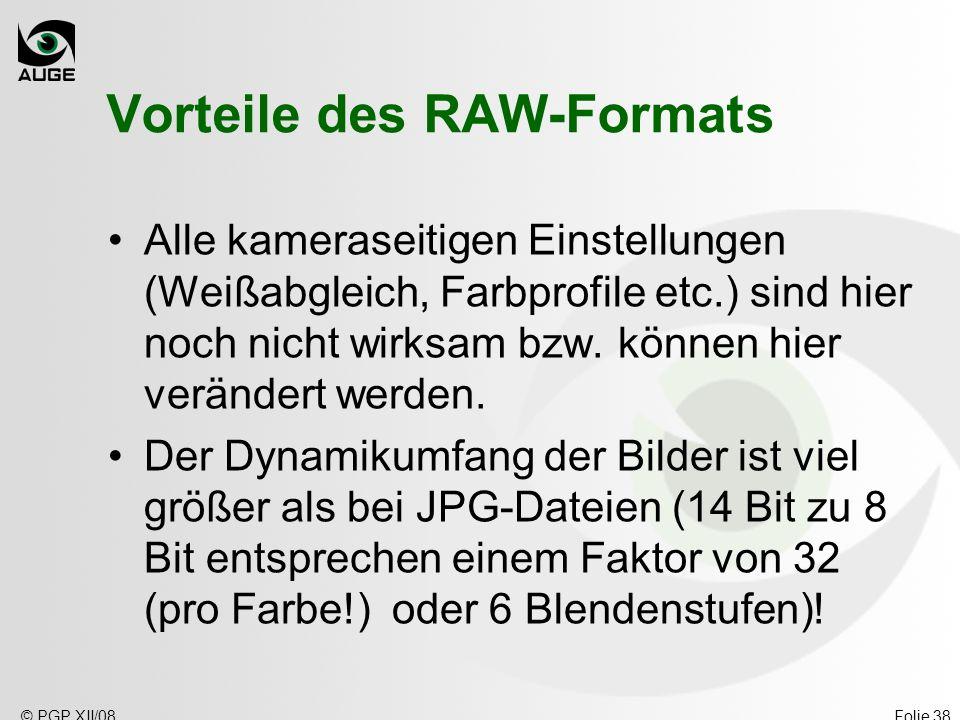 © PGP XII/08Folie 38 Vorteile des RAW-Formats Alle kameraseitigen Einstellungen (Weißabgleich, Farbprofile etc.) sind hier noch nicht wirksam bzw. kön