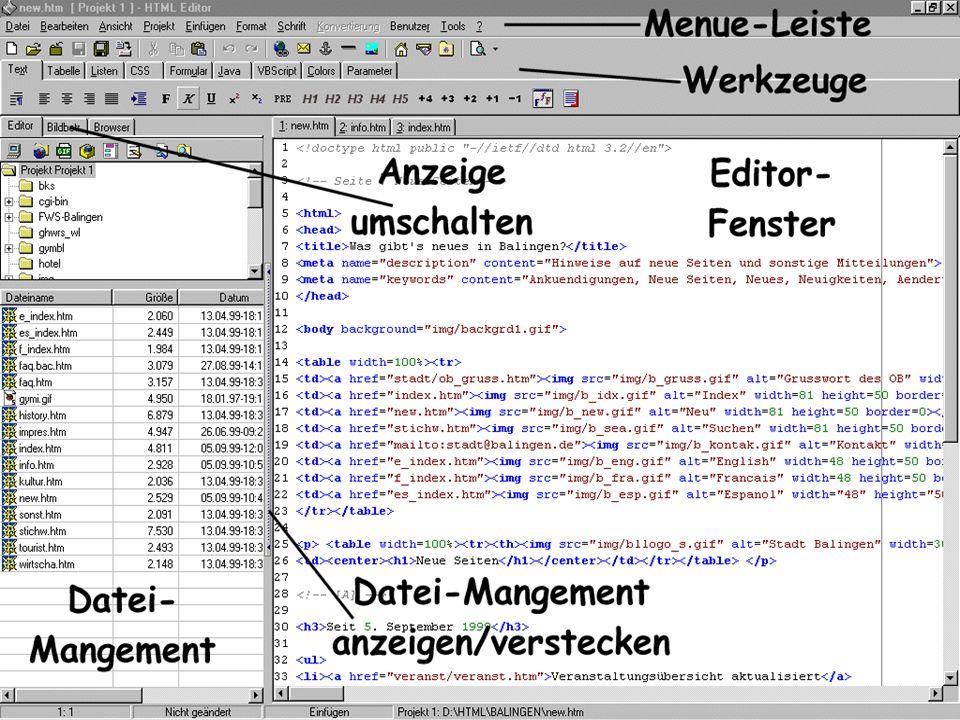 Start des Editors Starten Sie den Editor durch einen Klick bzw. Doppelklick auf das Symbol: Machen Sie sich einen Moment mit dem Aufbau des Editors ve