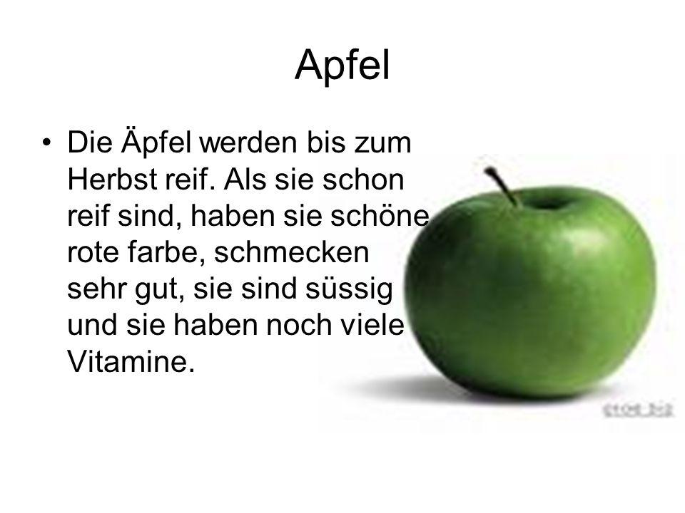 Apfel Die Äpfel werden bis zum Herbst reif.