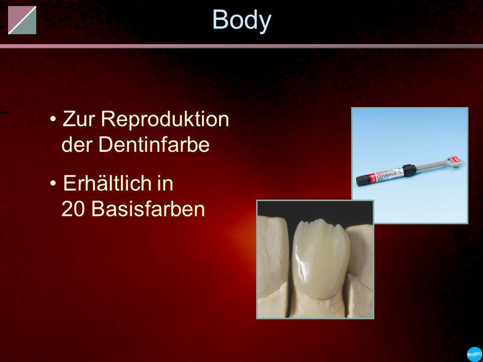 Body Zur Reproduktion der Dentinfarbe Erhältlich in 20 Basisfarben