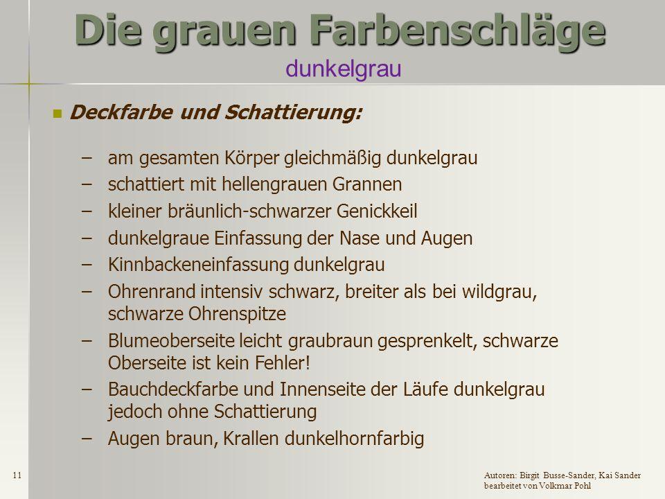 10Autoren: Birgit Busse-Sander, Kai Sander bearbeitet von Volkmar Pohl Die grauen Farbenschläge dunkelgrau Zugelassene Rassen: DR, DW, EW, GrW, DKlW, H, ZwW und Fzw