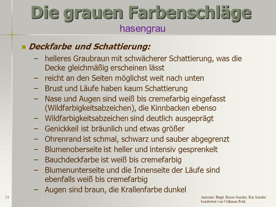 23Autoren: Birgit Busse-Sander, Kai Sander bearbeitet von Volkmar Pohl Die grauen Farbenschläge hasengrau Zugelassene Rassen: DR, DW, EW, GrW, DKlW, H, ZwW und Fzw