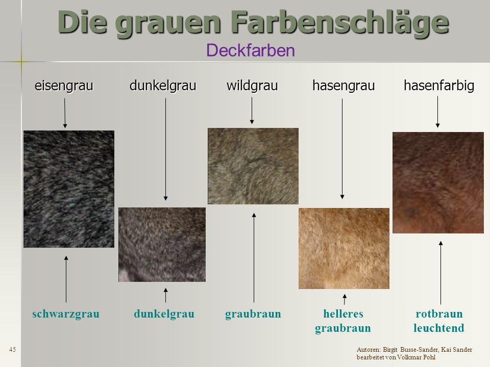 44Autoren: Birgit Busse-Sander, Kai Sander bearbeitet von Volkmar Pohl Die grauen Farbenschläge Meldebeispiele Meldung falsch ausgefüllt, da die Angabe grau nicht mehr ausreichend ist .