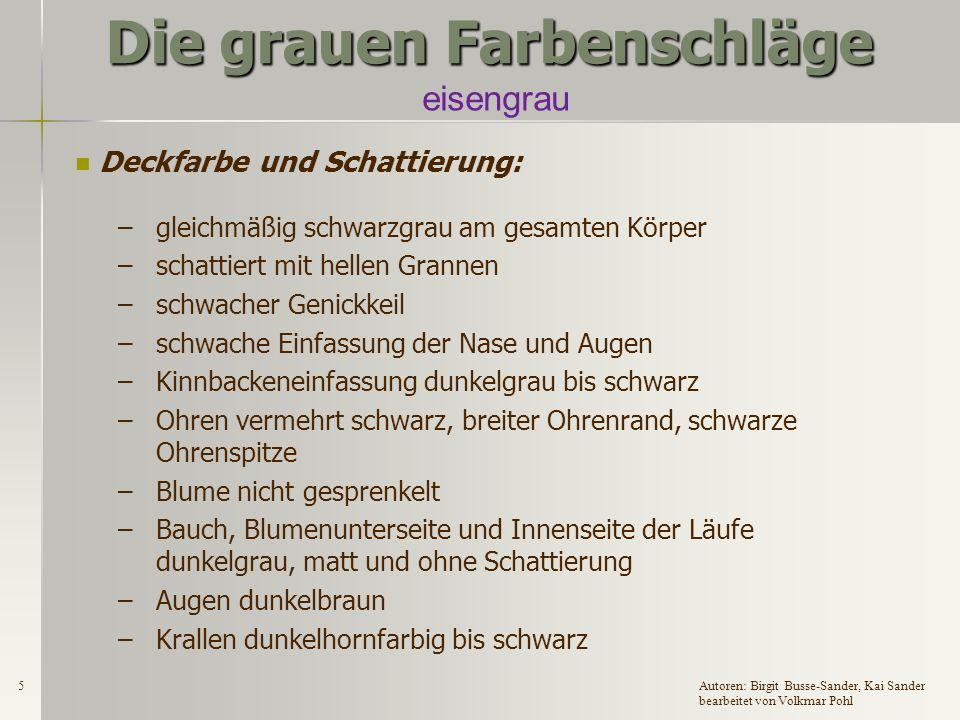 4Autoren: Birgit Busse-Sander, Kai Sander bearbeitet von Volkmar Pohl Die grauen Farbenschläge eisengrau Zugelassene Rassen: DR, DW, EW, DKlW, H, ZwW und Fzw