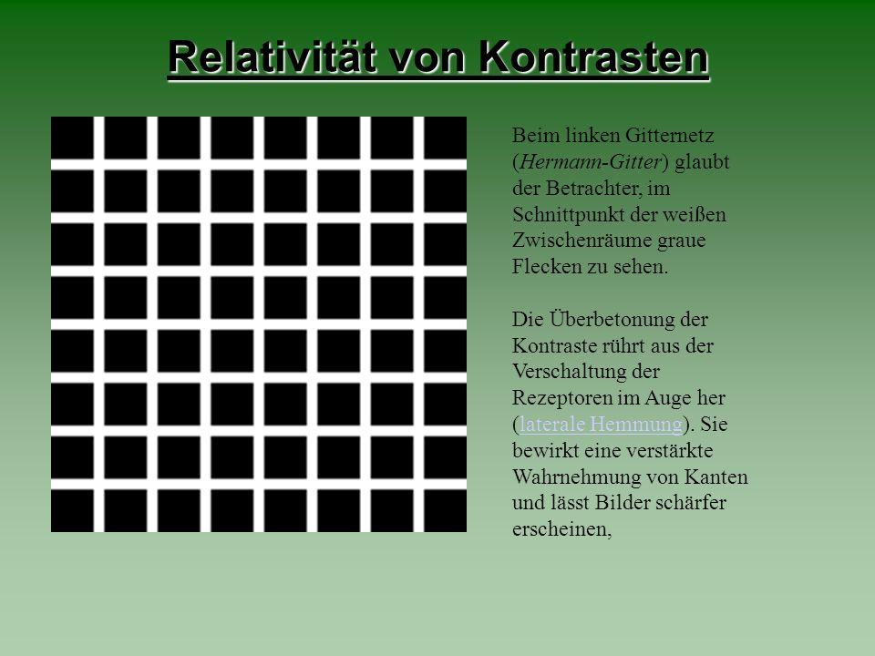 Relativität von Kontrasten Beim linken Gitternetz (Hermann-Gitter) glaubt der Betrachter, im Schnittpunkt der weißen Zwischenräume graue Flecken zu se