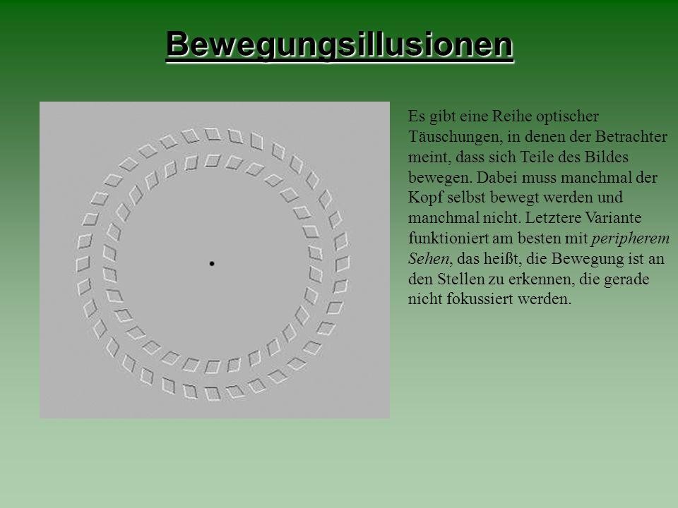 Bewegungsillusionen Es gibt eine Reihe optischer Täuschungen, in denen der Betrachter meint, dass sich Teile des Bildes bewegen. Dabei muss manchmal d