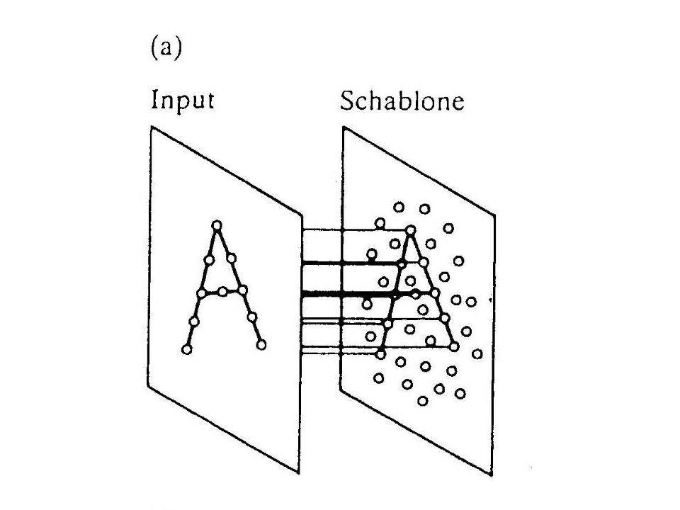 Schablonenabgleich Annahme: Dem Gehirn wird ein getreues Netzhautbild der Reizvorlage übermittelt. Dieses Abbild wird mit bereits gespeicherten Muster
