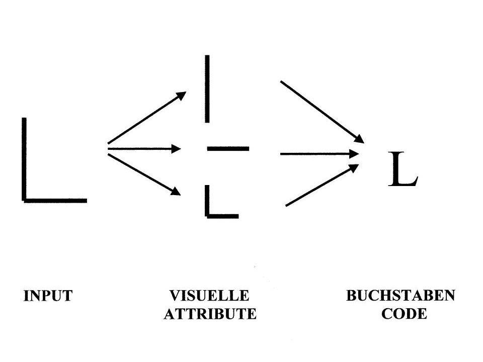 Merkmalsanalyse Annahmen: Jeder Reiz besteht aus einer Kombination von elementaren (markanten) Merkmalen und Regeln der Verknüpfung zwischen diesen Merkmalen Einzelne markante Merkmale und die Art der Verknüpfung werden hinsichtlich Überein- stimmung überprüft Beispiel: L längere horizontale und kürzere vertikale Linie, die rechtwinklig zueinander angeordnet sind