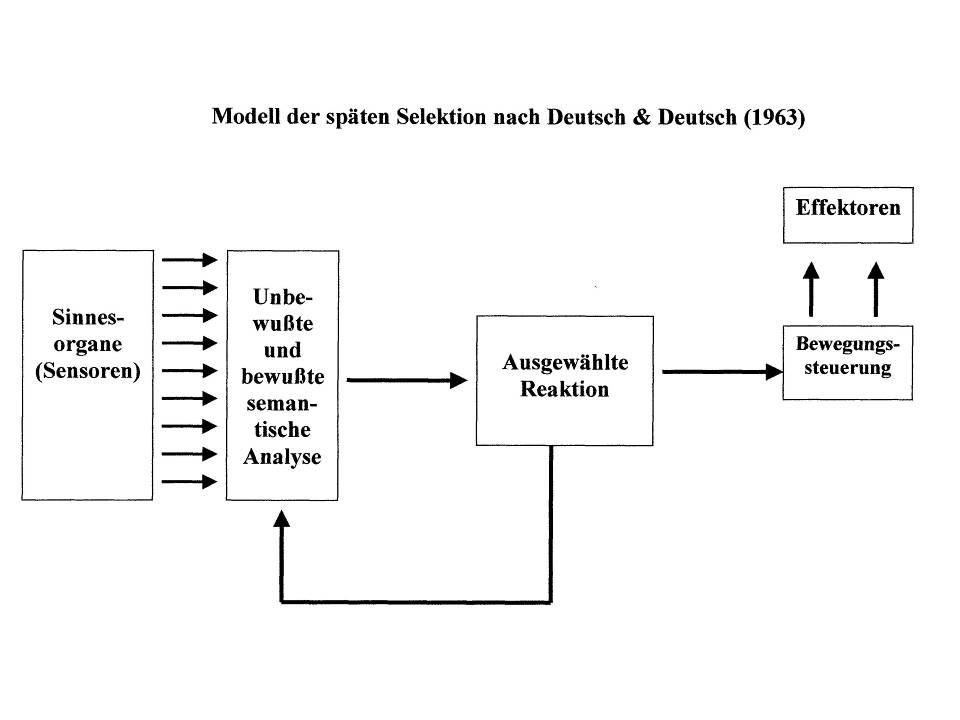 Modell der späten Selektion (Deutsch & Deutsch, 1963) 1.Semantische Analyse für alle Informationen 2.Auswahl nach unterschiedlichen Kriterien (Ort: li