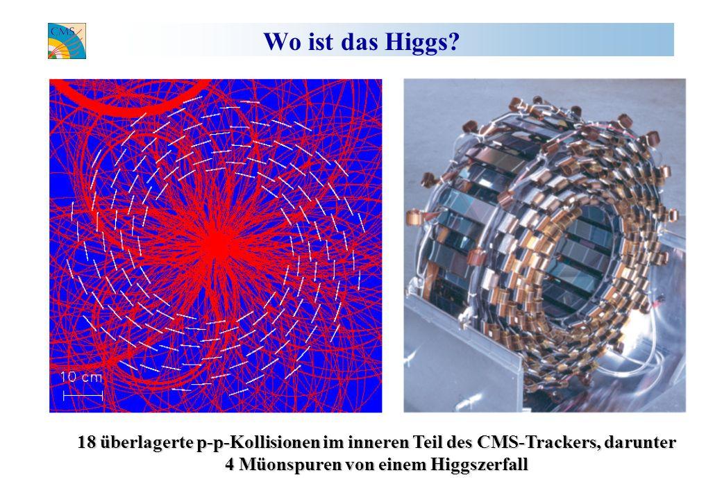 Wo ist das Higgs? 18 überlagerte p-p-Kollisionen im inneren Teil des CMS-Trackers, darunter 4 Müonspuren von einem Higgszerfall