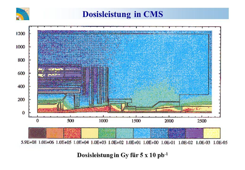 Dosisleistung in CMS Dosisleistung in Gy für 5 x 10 pb -1
