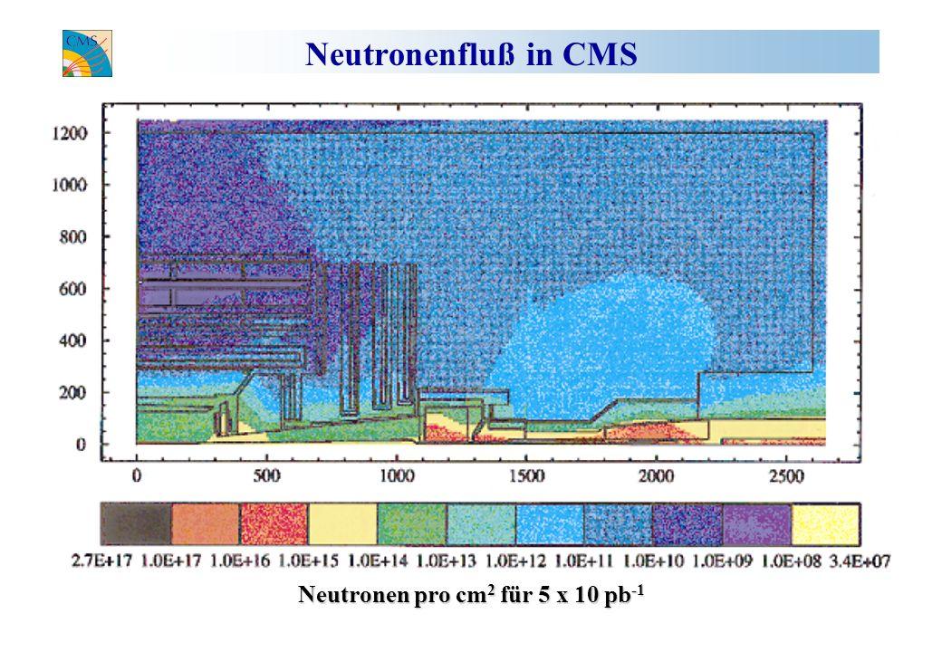 Neutronenfluß in CMS Neutronen pro cm 2 für 5 x 10 pb -1