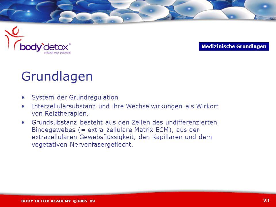 23 BODY DETOX ACADEMY ©2005–09 System der Grundregulation Interzellulärsubstanz und ihre Wechselwirkungen als Wirkort von Reiztherapien. Grundsubstanz