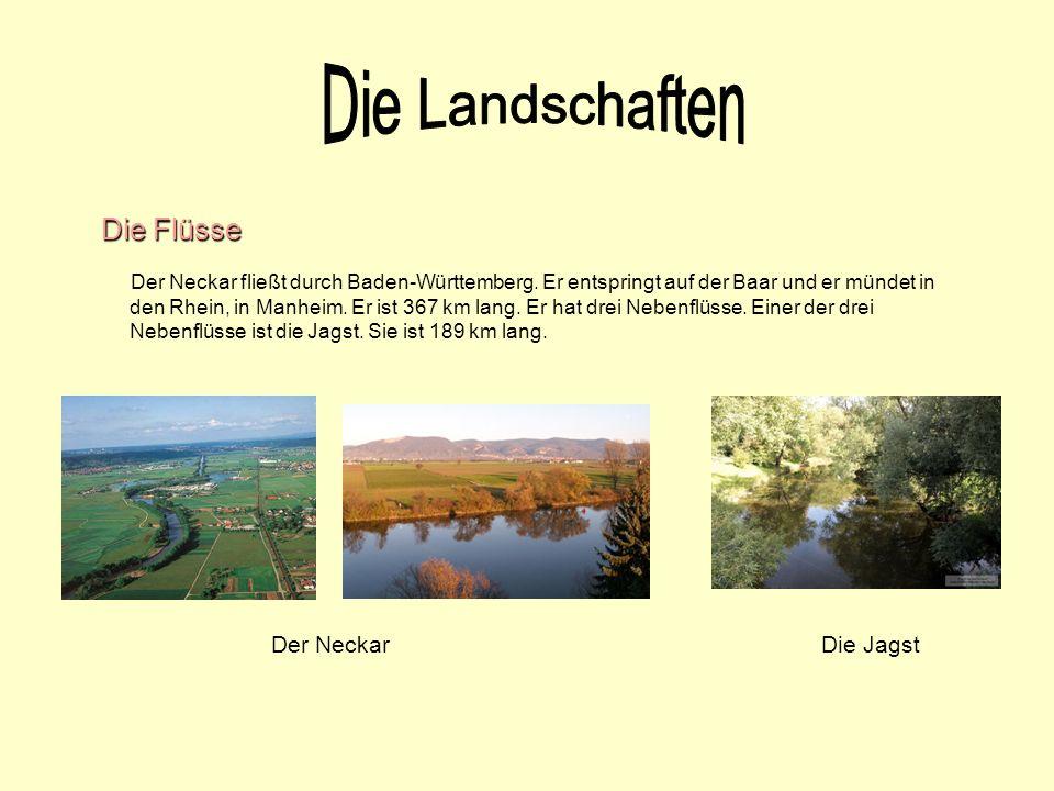 Die Flüsse Der Neckar fließt durch Baden-Württemberg. Er entspringt auf der Baar und er mündet in den Rhein, in Manheim. Er ist 367 km lang. Er hat dr
