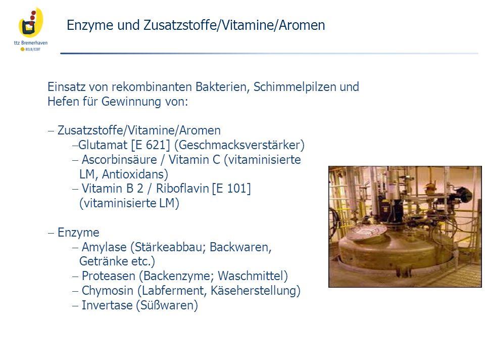 Einsatz von rekombinanten Bakterien, Schimmelpilzen und Hefen für Gewinnung von: Zusatzstoffe/Vitamine/Aromen Glutamat [E 621] (Geschmacksverstärker)